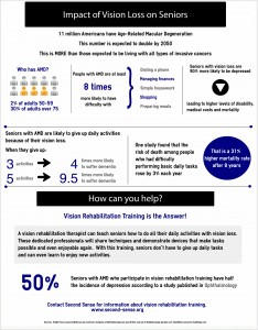 An infographic summarizing statistics about the impact of vision loss on seniors