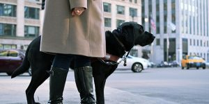 Kathy and her guide dog, Weller, on a street corner in Chicago
