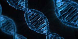 DNA strand showing its unique double helix structure