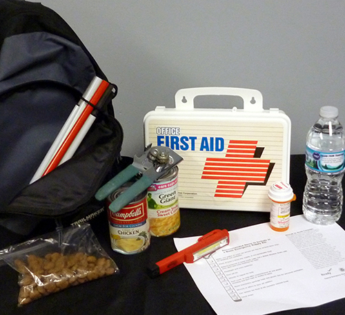Backpack with items for an emergency kit: spare cane, dog food, first aid, medication, food, flashlight and water