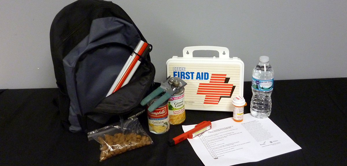 An emergency kit: Backpack with spare cane, baggie of dog food, first aid kit, food, flashlight, medication and water.