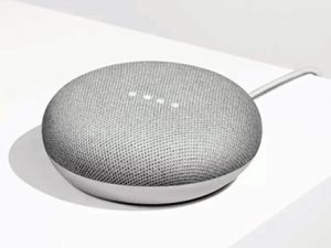 Google's Smart Speaker, the Home Mini