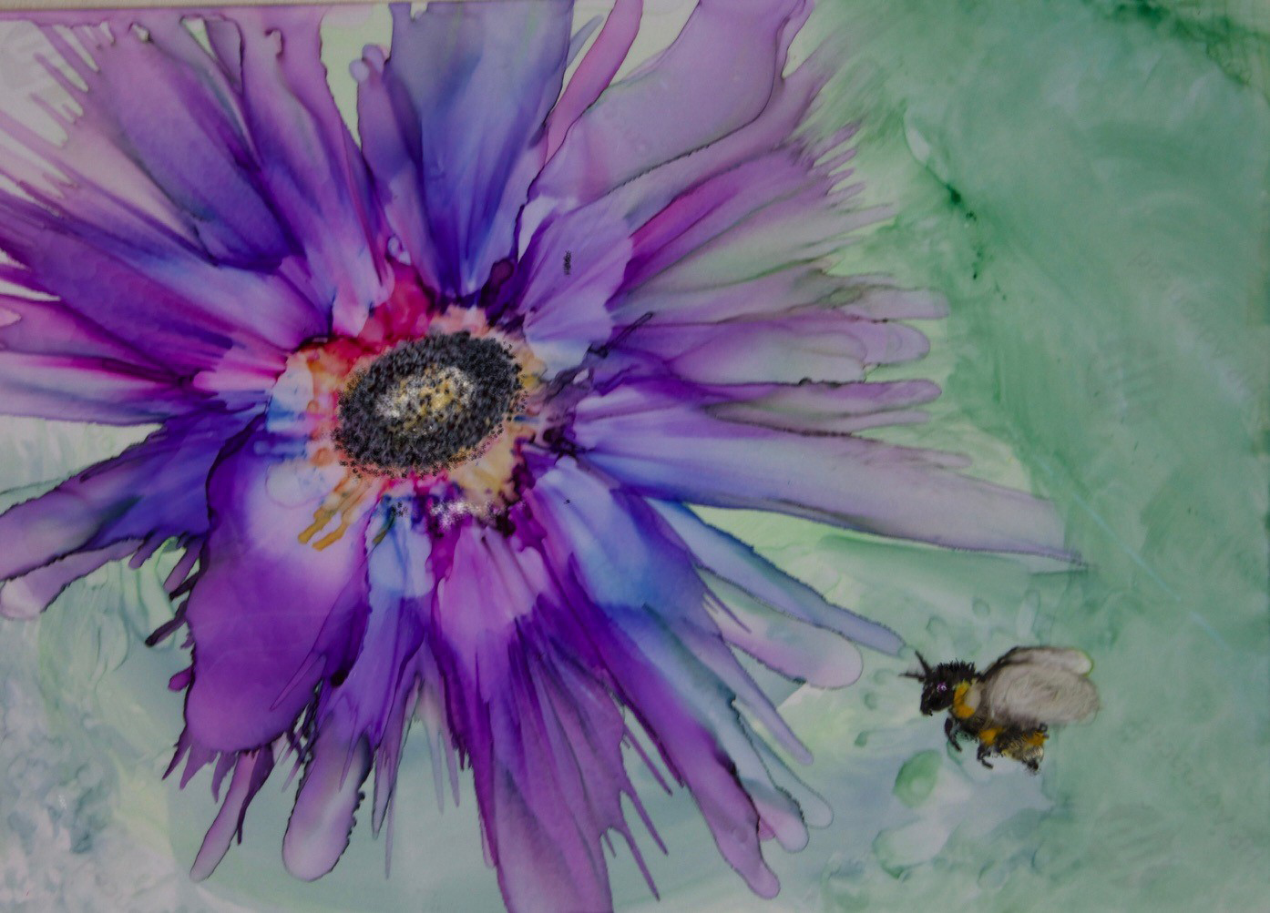 2021 Image of Passionate Focus shows a vivid purple flower against a pale green background with a plump bumble bee ready to land.
